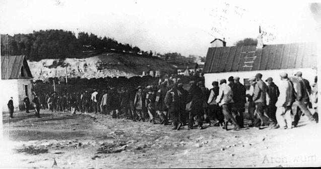 Nach Belzec deportierte Juden werden ins Vernichtungslager geführt